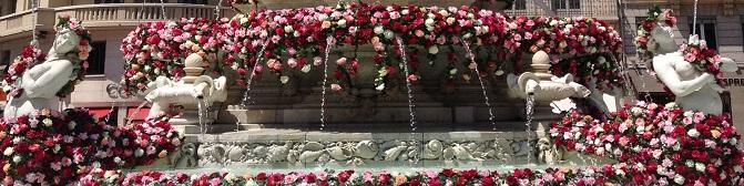 bannn fleurs