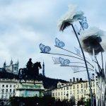 Le joli souvenir de la Place Bellecour un matin dehellip